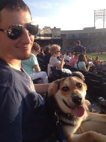 Man Sitting At A Baseball Game With His Dog.