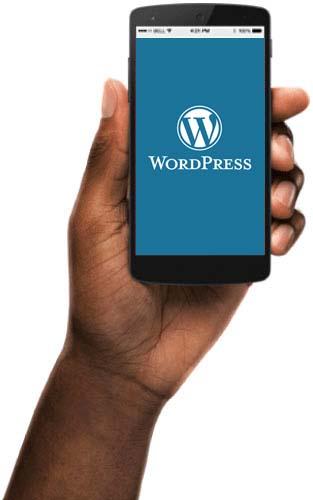 responsive WooCommerce site