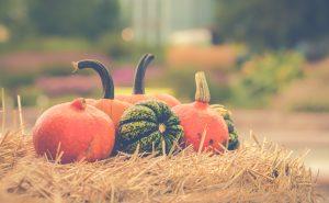 Fall in Ohio